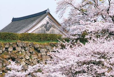sasayama